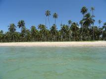 Praia do Patacho, Brasil