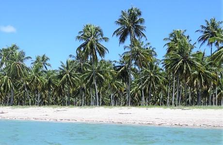 Praoa do Patacho, Brasil.